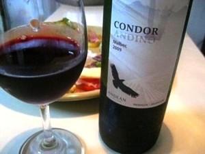 アルゼンチンワイン コンドール・アンディーノ Malbec red マルベック 赤